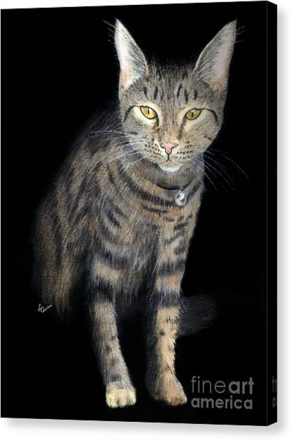 Night Vision Canvas Print