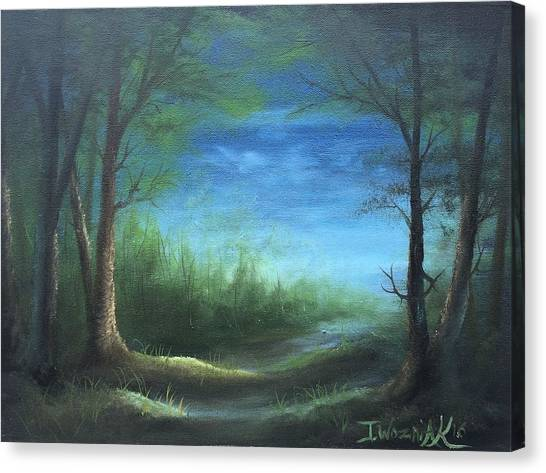 Nightfall In The Boggs  Canvas Print