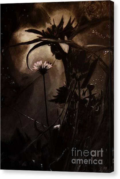 Nightflower Canvas Print