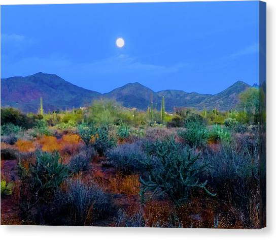 Mountain Caves Canvas Print - Nights Of Arizona by Joy Elizabeth