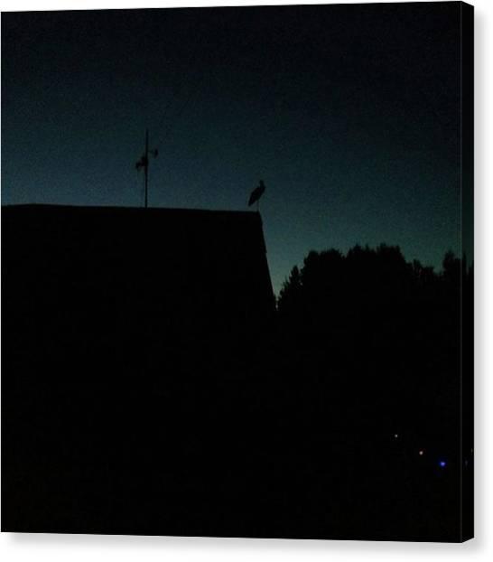 Storks Canvas Print - #night#stork by Olga Strogonova