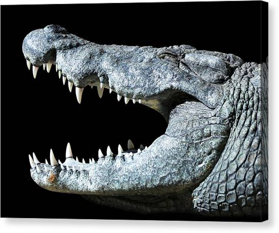 Nile Croco-smile Canvas Print