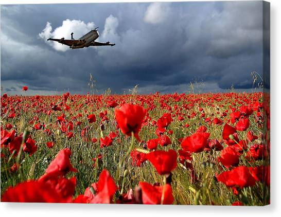 Air Force Canvas Print - Nimrod Respects by Smart Aviation