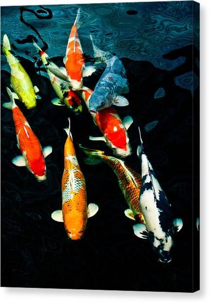 Nine Koi Canvas Print
