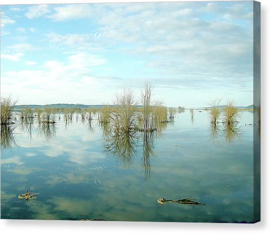 Nisqually High Tide Canvas Print