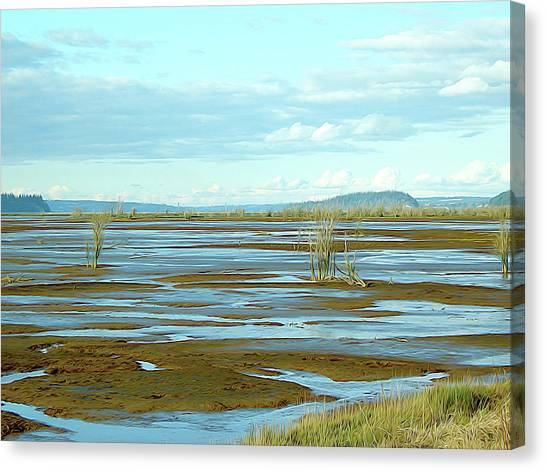 Nisqually Looking North Canvas Print