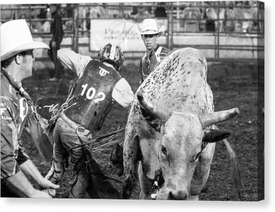 Rodeo Clown Canvas Print - No Bull by Steven Bateson