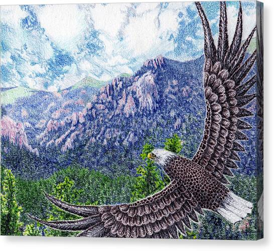 Prisma Colored Pencil Canvas Print - No Limits For The Wing by Nils Bifano