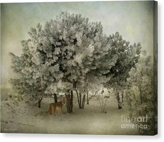 No Regrets Coyote Canvas Print