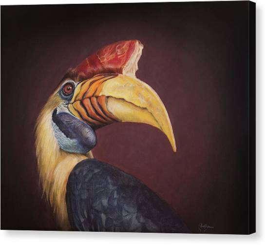 Hornbill Canvas Print - Nobility by Kirsty Rebecca