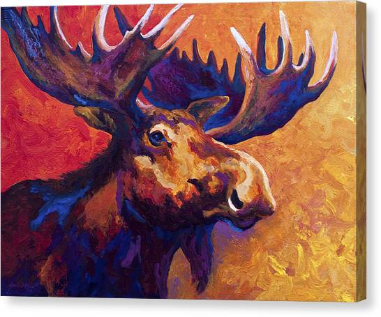 Moose Canvas Print - Noble Pause by Marion Rose