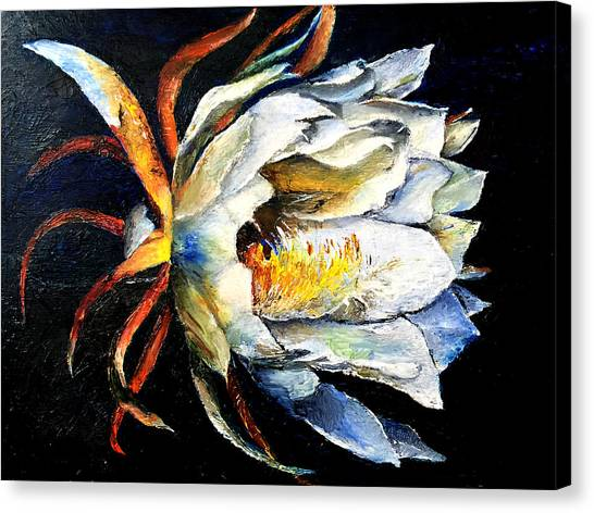 Nocturnal Desert Blossom Canvas Print