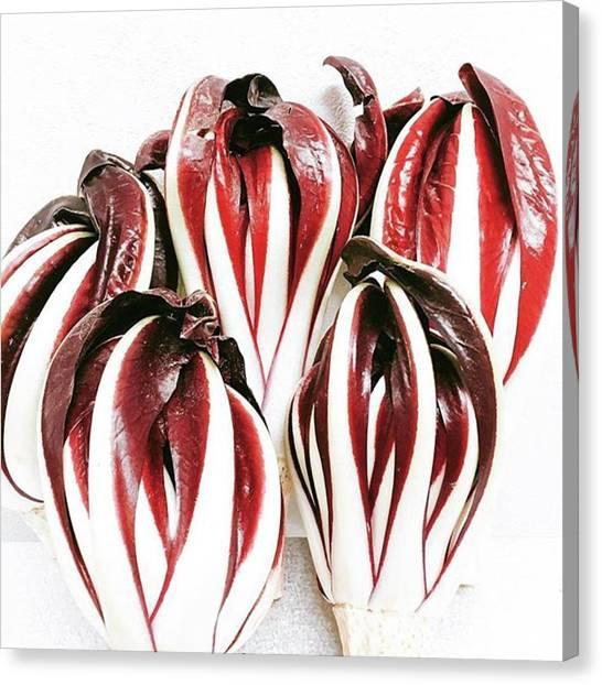 Italian Canvas Print - タルティーヴォ! #organic by Mark Matsuo