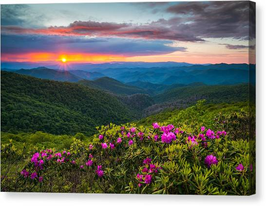Blue Ridge Parkway Canvas Print - North Carolina Blue Ridge Parkway Landscape Craggy Gardens Nc by Dave Allen