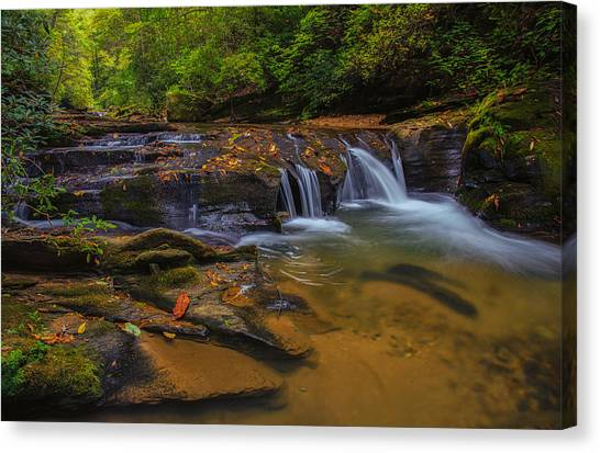 North Carolina Cascade Canvas Print