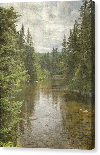 North Country  Canvas Print