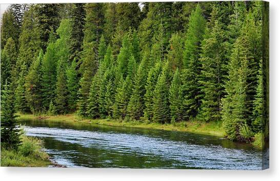 North Fork Of The Flathead Canvas Print