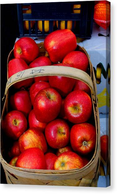 North Ga. Apples Canvas Print by Ralph  Perdomo