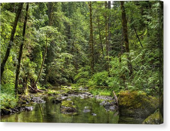 North Souixon Creek Canvas Print