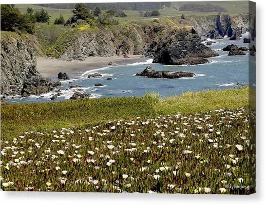 Northern California Coast Scene Canvas Print