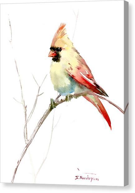 Northern Cardinal,female Canvas Print