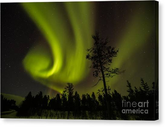 Northern Light In Finland Canvas Print