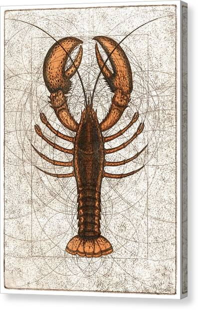 Northern Lobster Canvas Print