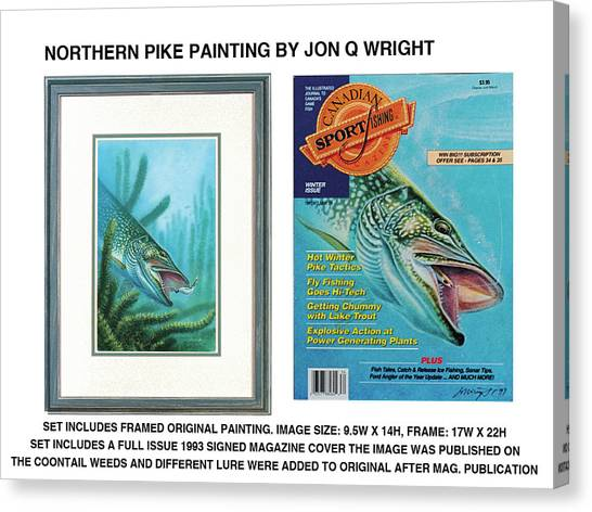 Northern Pike Original Canvas Print by JQ Licensing