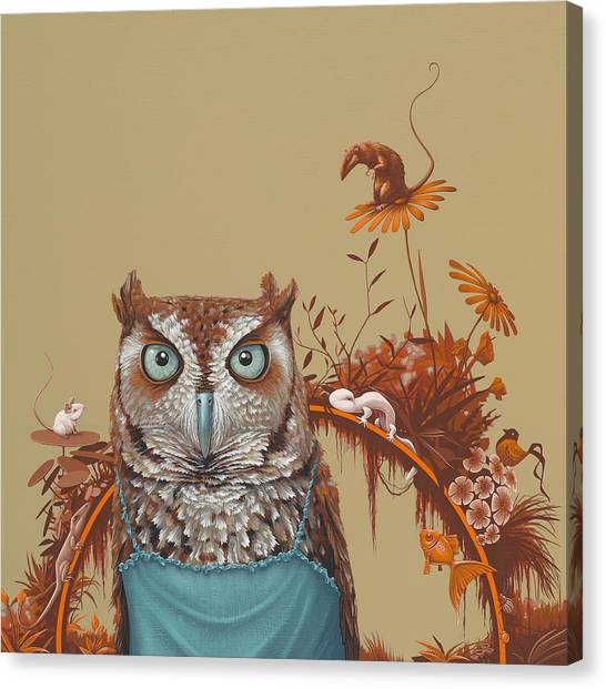 Owls Canvas Print - Northern Screech Owl by Jasper Oostland