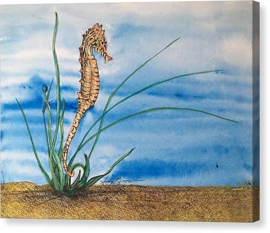 Northern Seahorse Canvas Print