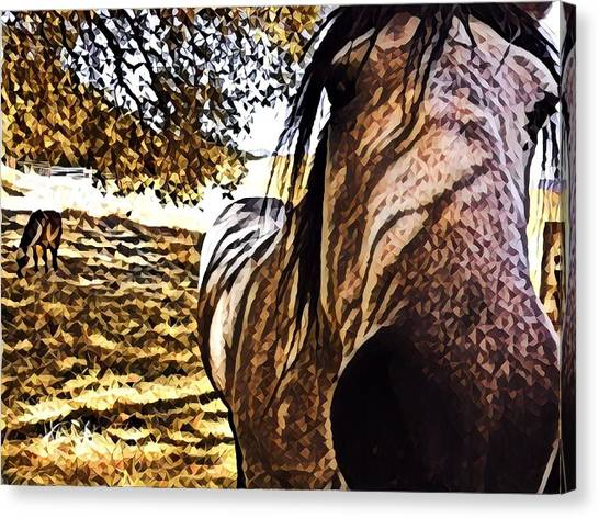 Nosey Belle Canvas Print