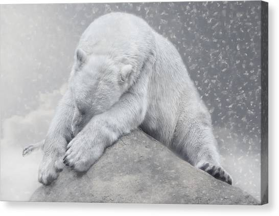 Climate Change Canvas Print - Not Dreaming Of White Christmas by Joachim G Pinkawa