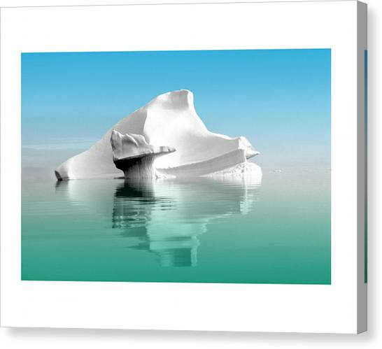 Not Without Life Canvas Print