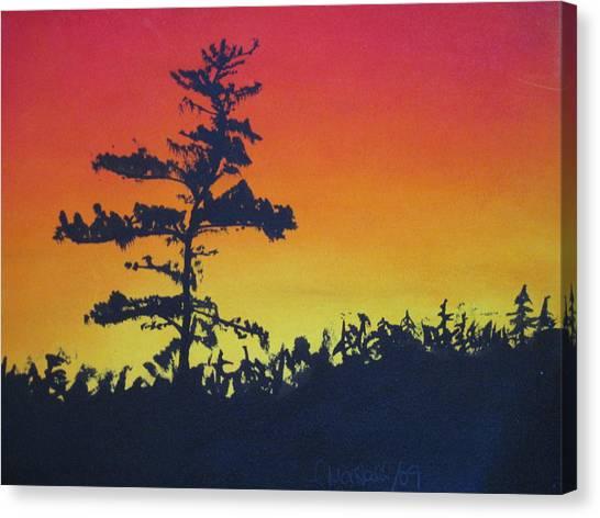 Nova Scotia Tree Canvas Print by Tabitha Marshall