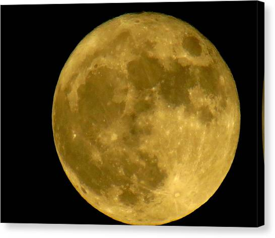 November Full Moon Canvas Print