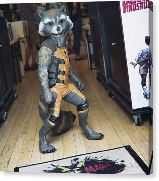 Raccoons Canvas Print - Now I'm Standing, You All Happy??? by Armando Diaz