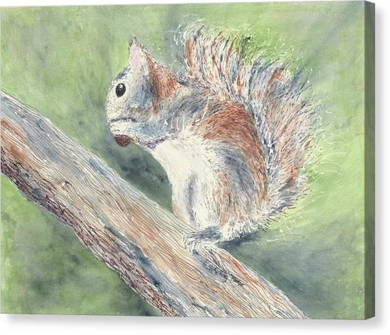 Nut Job Canvas Print