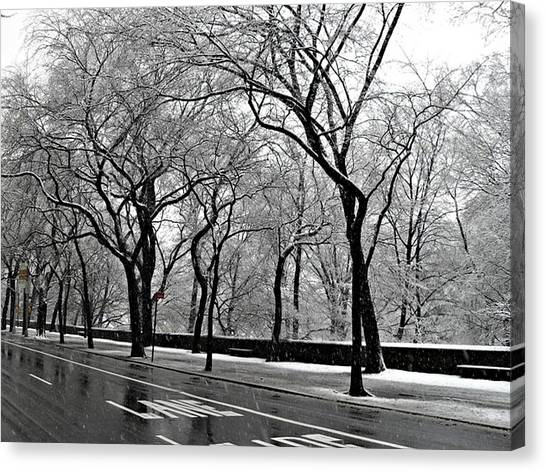 Nyc Winter Wonderland Canvas Print