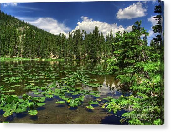 Nymph Lake Canvas Print by Pete Hellmann