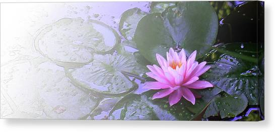 Nz Lily Canvas Print
