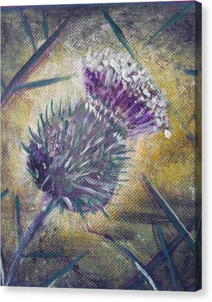 O' Flower Of Scotland Canvas Print