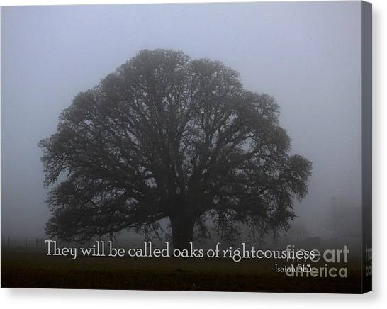 Oak Of Righteousness Canvas Print
