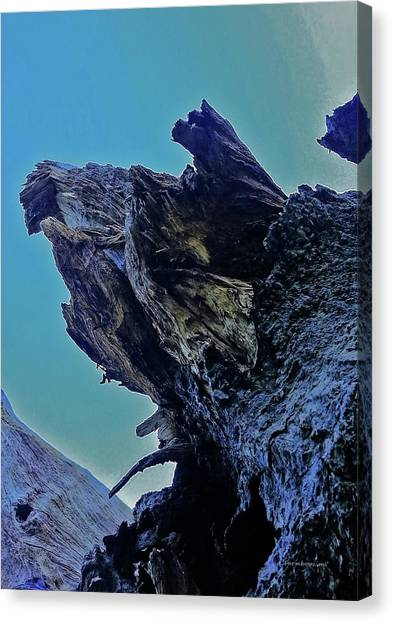 Oak Stump Canvas Print