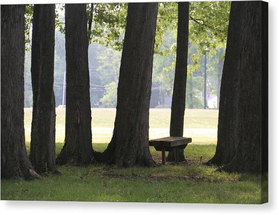 Kent State University Canvas Print - Oak Trees And Bench by Valerie Collins