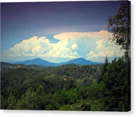 Oakrun Thunderstorm Canvas Print