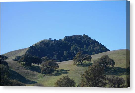Oakscape Canvas Print by Jean Booth