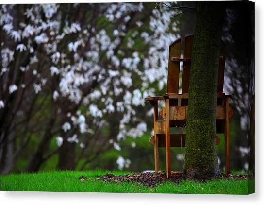 Observation Chair Canvas Print by David Christiansen
