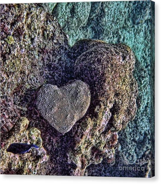 Ocean Love Canvas Print