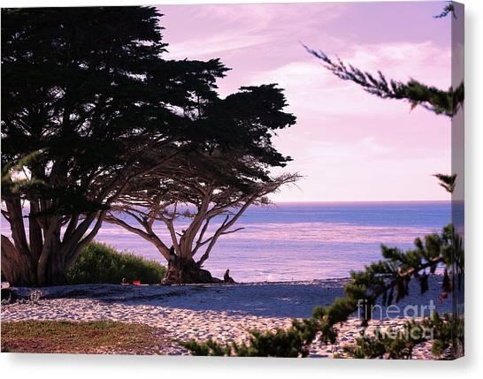 Ocean Views From Carmel Beach  Canvas Print