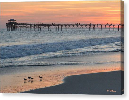 Oceanana Shorebirds Canvas Print